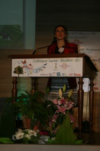 Anne-Hélène Prieur-Richard, Diversitas